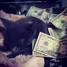 Make it rain (on a cat)